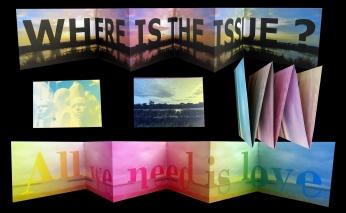 LE SHOP - galerie le lieu multiple montpellier - Delphine Sauret - WITI
